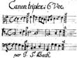 Canons and Late Contrapuntal Works